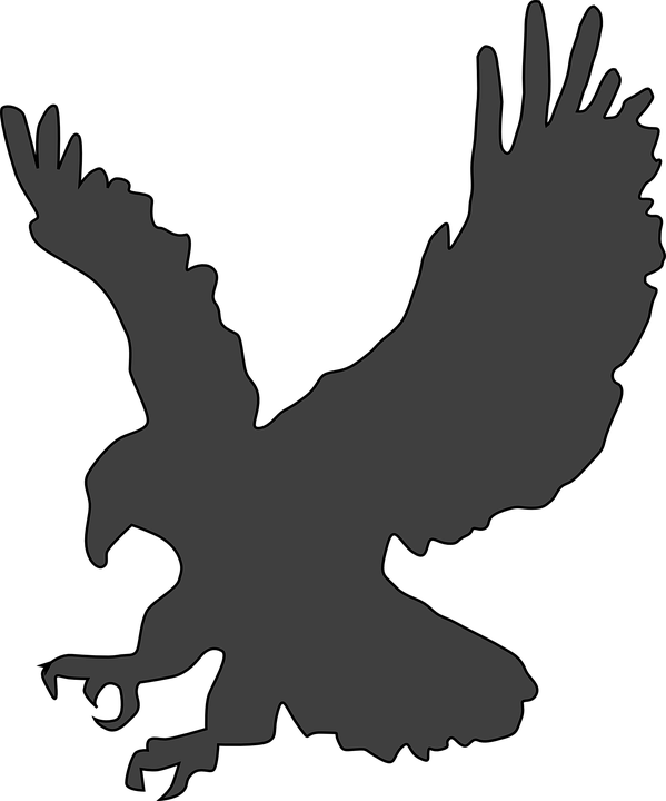 · Images Eagle Gratuites Sur Pixabay Grand Vectorielles Américaine OaOxtEB