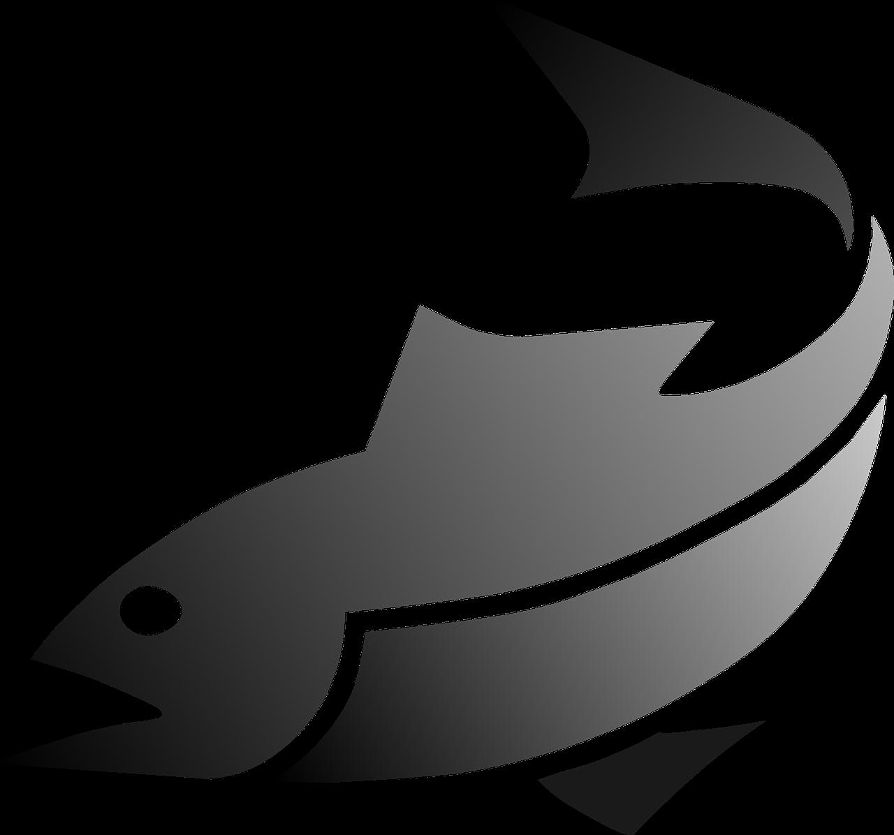Peixes Atum Frutos Do Mar Grafico Vetorial Gratis No Pixabay