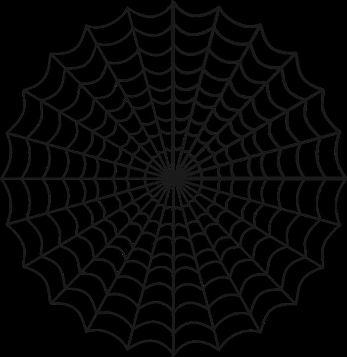 spider web cobweb net trap halloween nature