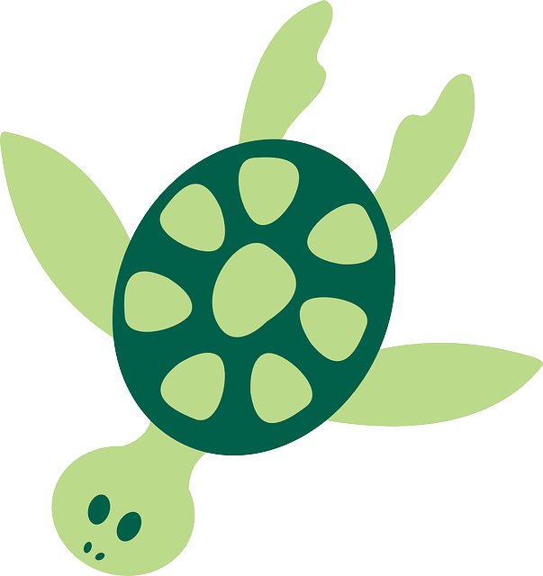 turtle sea animal free vector graphic on pixabay rh pixabay com ocean animal clip art free ocean animal clipart black and white