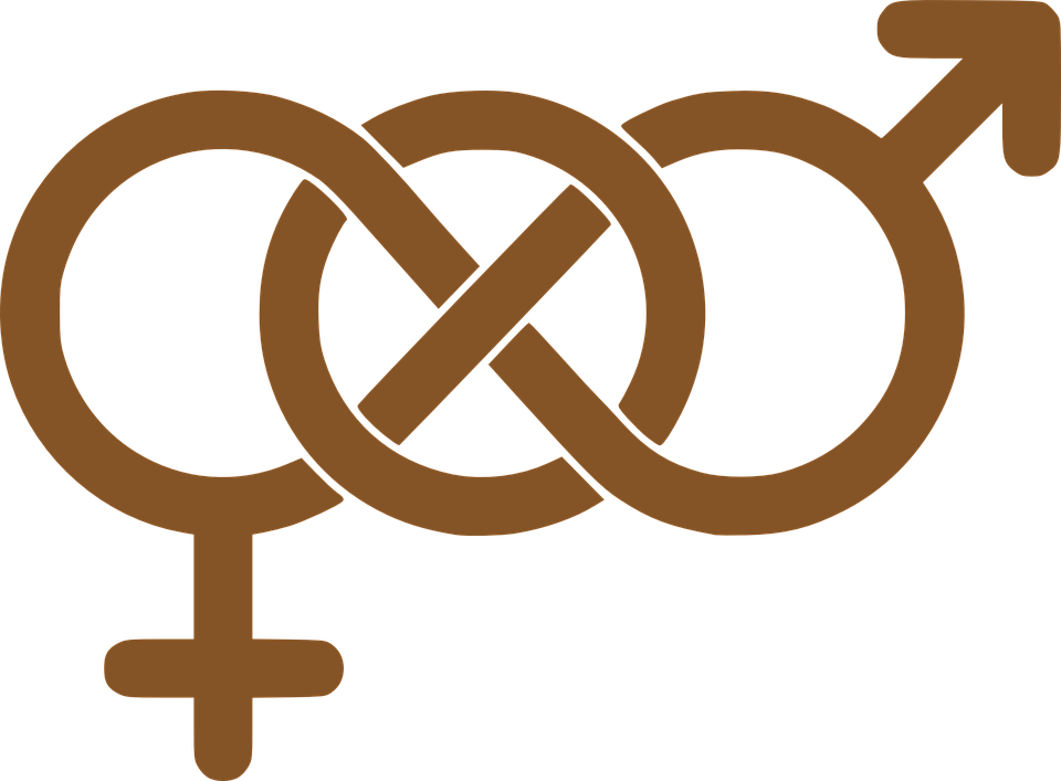 Male Female Symbols Free Vector Graphic On Pixabay