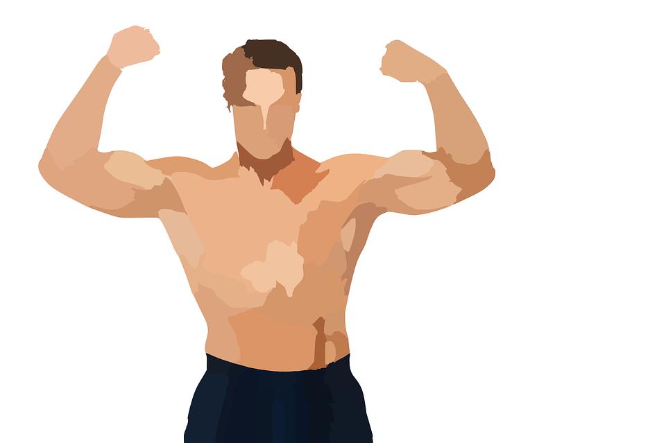 Musculacao Homem Corpo Grafico Vetorial Gratis No Pixabay