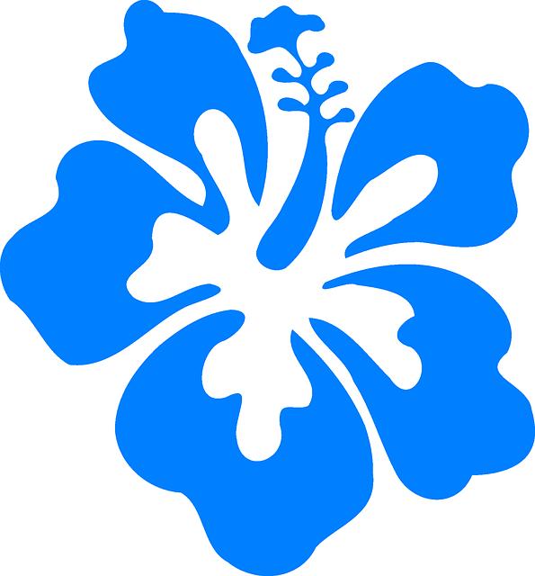 ... : Hibiscus, Blue, Tropical, Hawaiian - Free Image on Pixabay - 311445