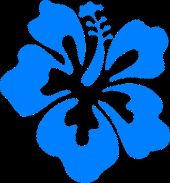 free vector graphic hibiscus - photo #16
