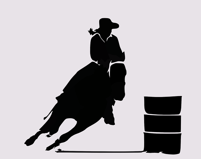 Rodeo Western Cowboy 183 Free Vector Graphic On Pixabay