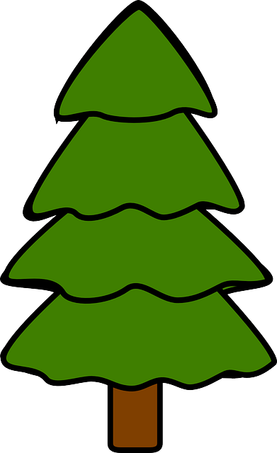 Free vector graphic tree fir pine spruce nature free image on pixabay 311574 - Sapin clipart ...
