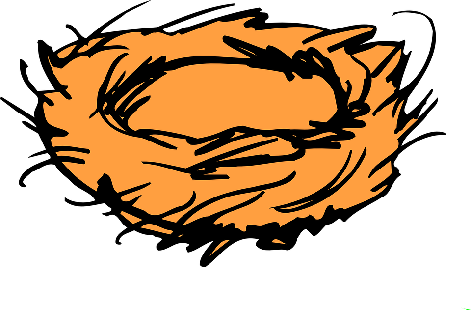 Kus Yuvasi Yuva Cim Pixabay Da Ucretsiz Vektor Grafik