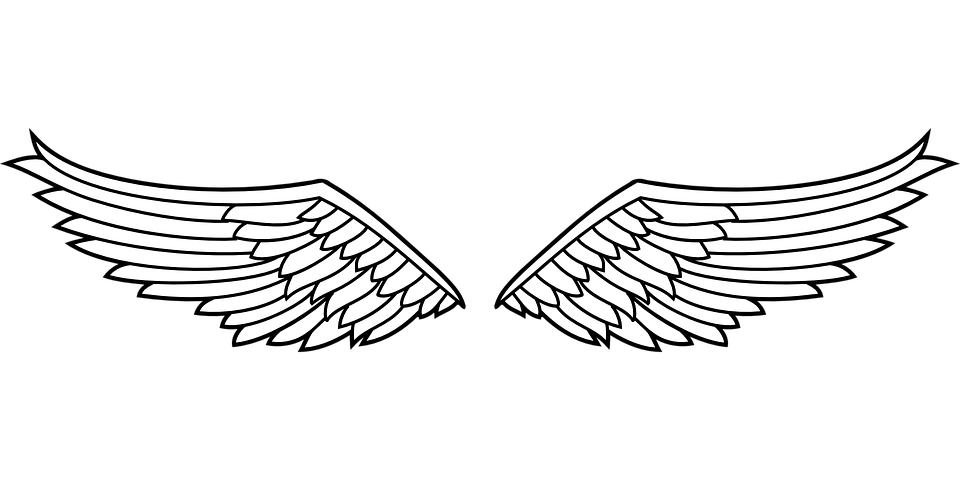 insignia wings eagle 183 free vector graphic on pixabay