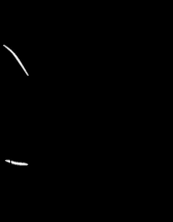 Similiar Stethoscope Drawing Keywords
