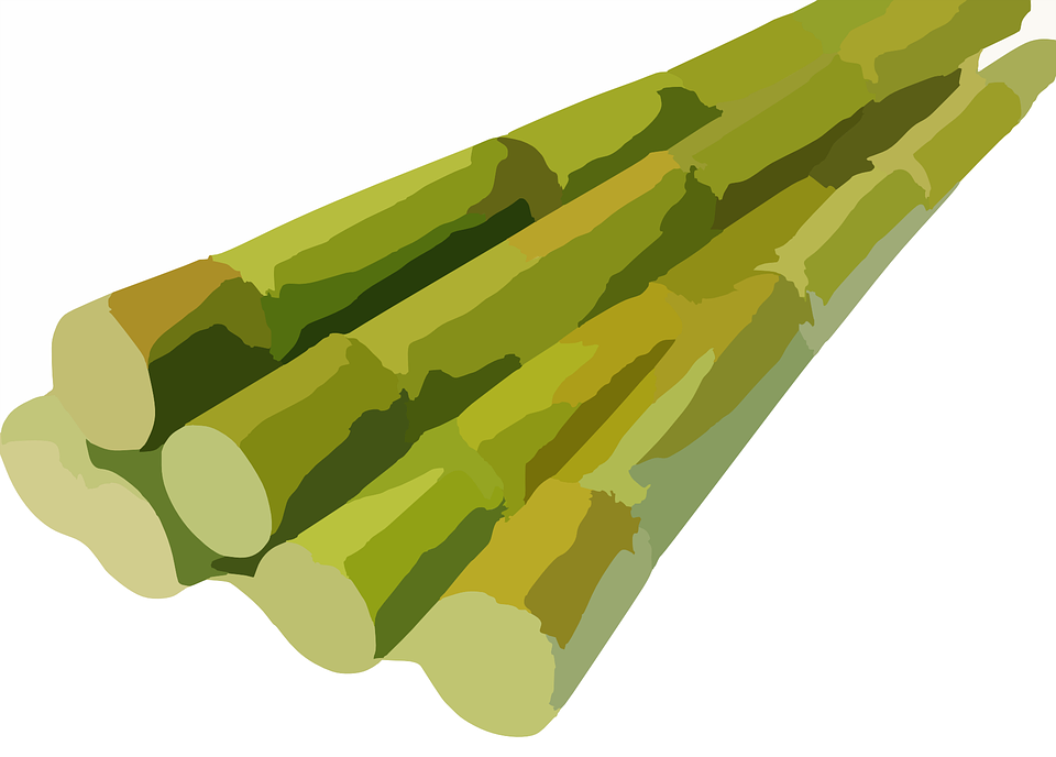 Free Vector Graphic: Sugarcane, Cane, Harvested, Bunch