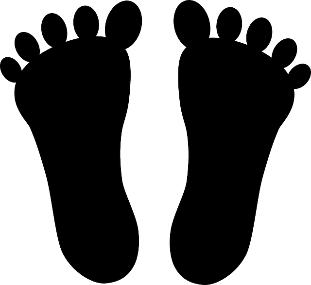 Feet Foot Body · Free vector graphic on Pixabay