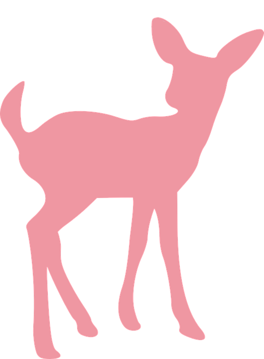 Deer Fawn Wildlife 183 Free Vector Graphic On Pixabay