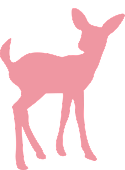 Deer Fawn Wildlife Animal Mammal Youn