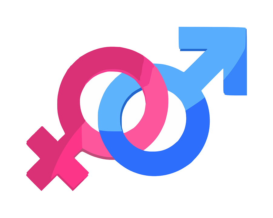 Gender Sex Symbol Free Vector Graphic On Pixabay