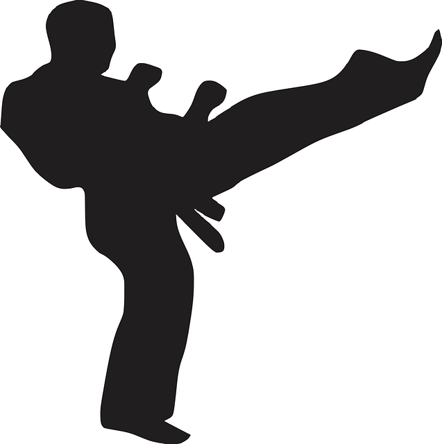 Karate Kick Sport 183 Free Vector Graphic On Pixabay