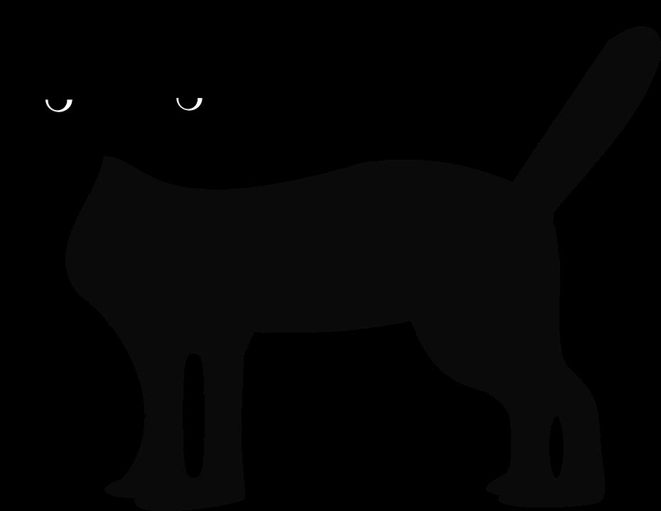 Black Cat Animal Feline Tabby Evil