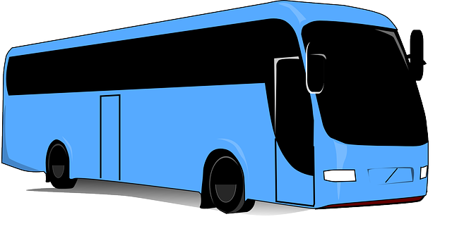 bus travel transport  vector graphic  pixabay