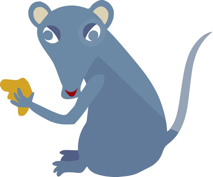 Del Ratón, Roedor, Comer, Queso, Animales, Mamíferos
