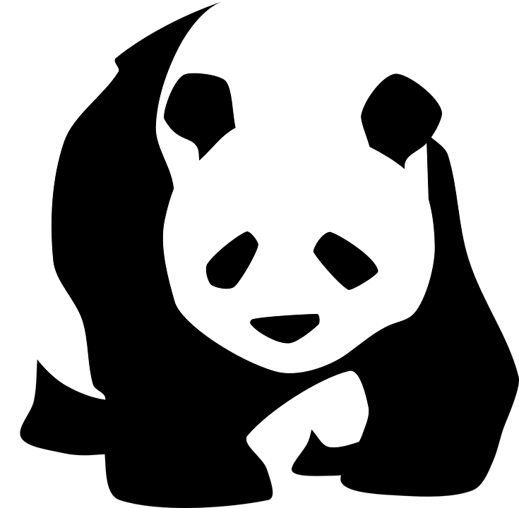 panda giant bear free vector graphic on pixabay rh pixabay com panda vector png panda vector art