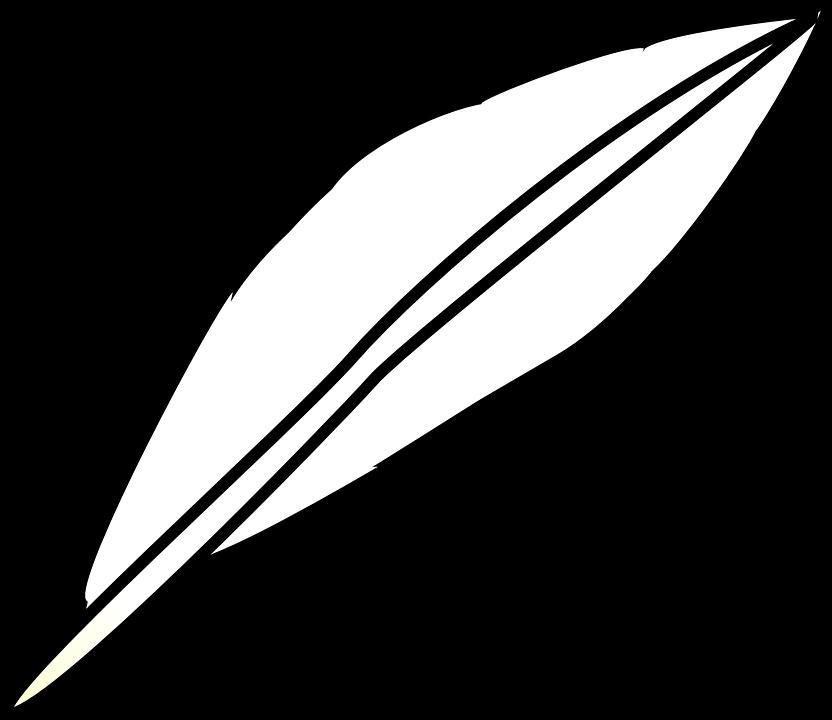 Pluma Ave Ligero Gráficos Vectoriales Gratis En Pixabay