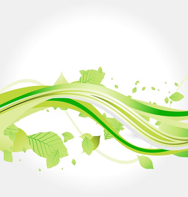 flora r u00e9sum u00e9 filigrane la  u00b7 images vectorielles gratuites sur pixabay