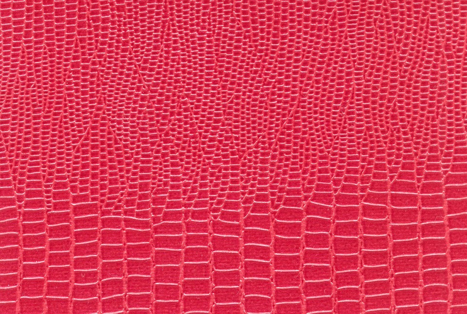 Free Photo Textile Snake Skin Pink Red Free Image On