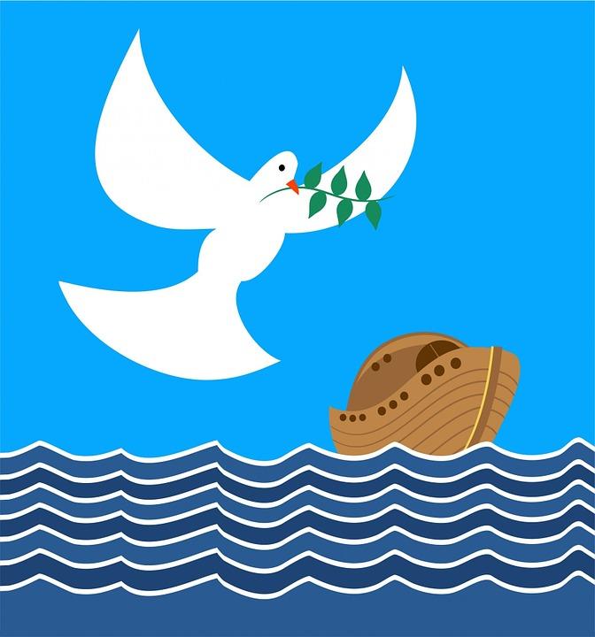 「諾亞方舟」的圖片搜尋結果
