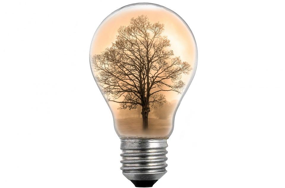Bulb Light White · Free image on Pixabay