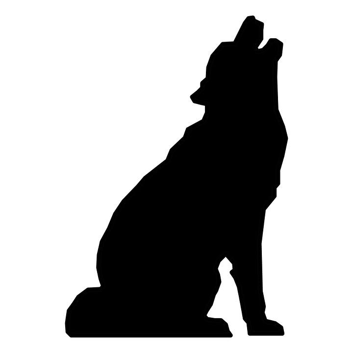 Silueta Negro Wolf Imagen Gratis En Pixabay