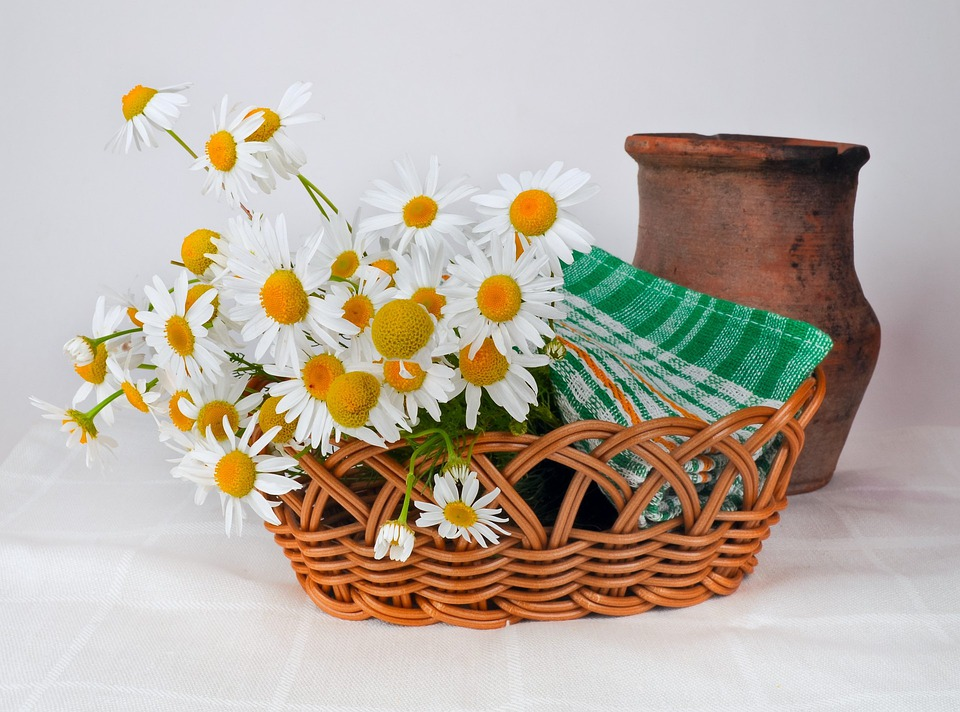 Daisies, Basket Weaving, Pot, Jug, Clay, Old
