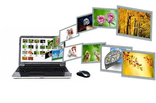Internet, Content, Portal, Search