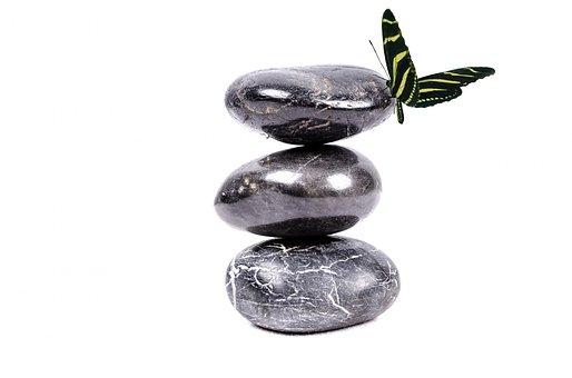 Stein, Zen, Weiß, Spa, Schwarz, Pflanze