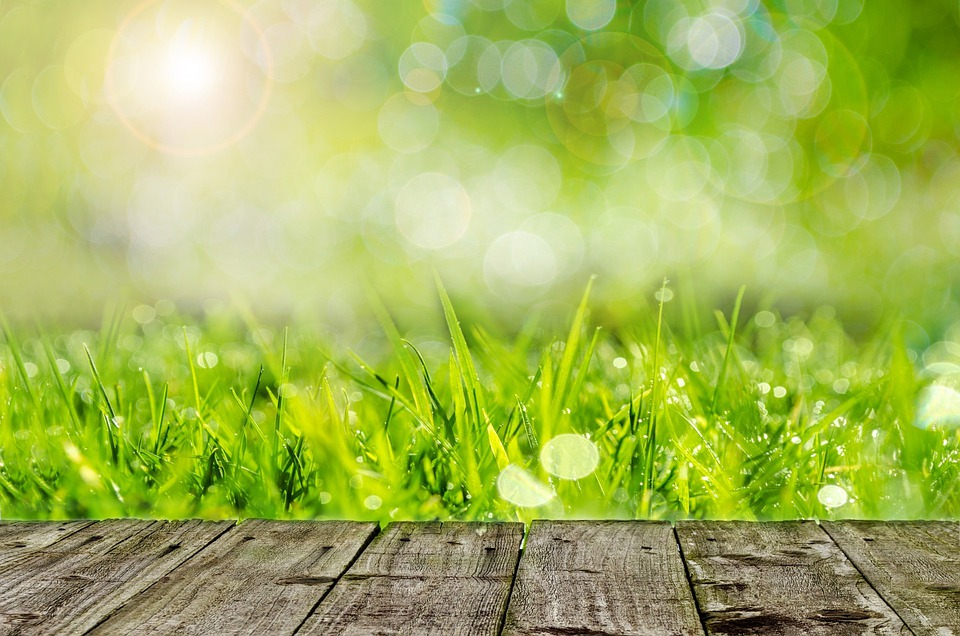 green spring background - photo #17