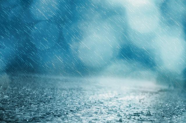 Rain Bird Drip
