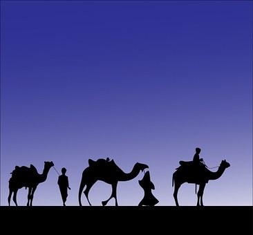 1,000+ Free Camel & Desert Images - Pixabay