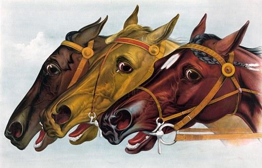 100+ Free Horse Head & Horse Illustrations - Pixabay