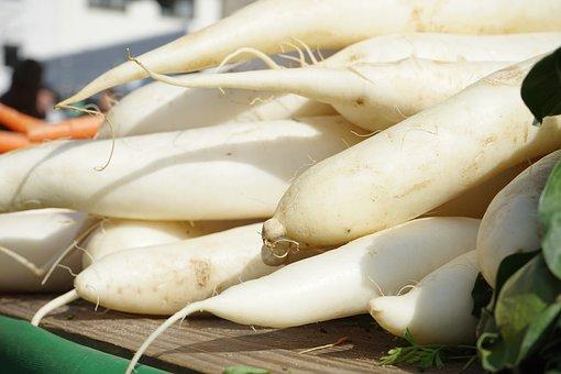大根, ダイコン属, 白, 野菜, 基数, ルート, アブラナ科植物