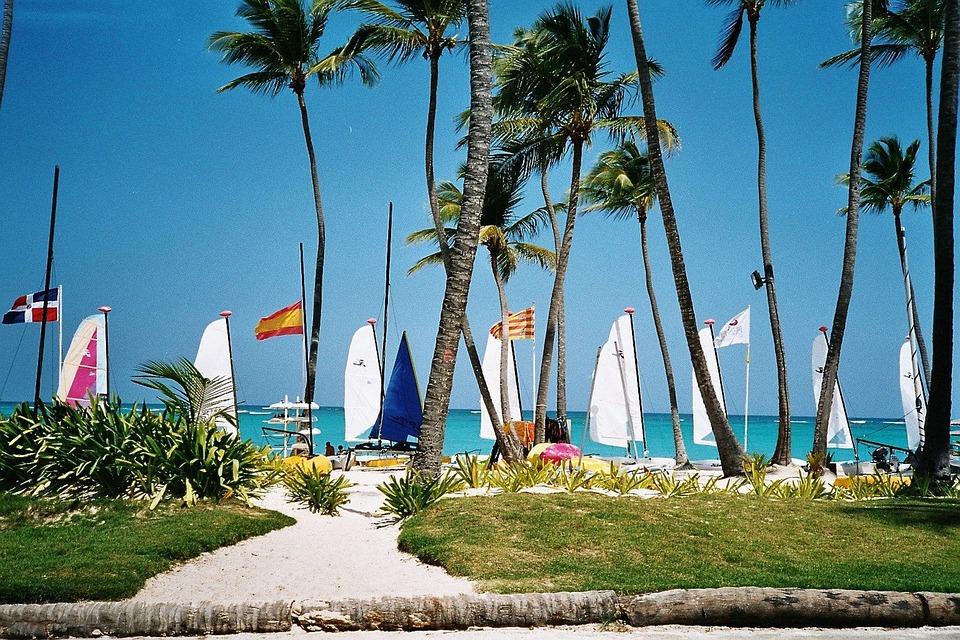 Dominikana, Karaibów, Morze, Plaży, Palmami