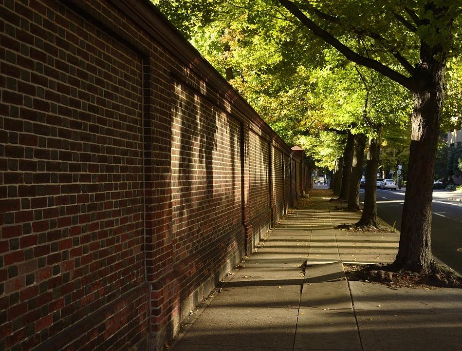 Brick Wall Street Sidewalk Shade Trees City