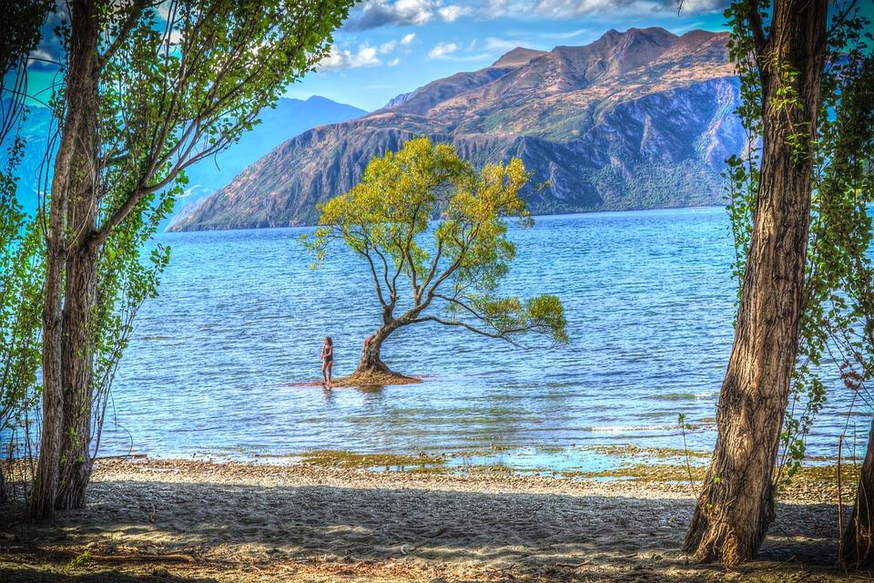 ワナカ, ニュージーランド, ワナカ湖, クラウド, 空, 自然, 風景, ローン, 孤独な木