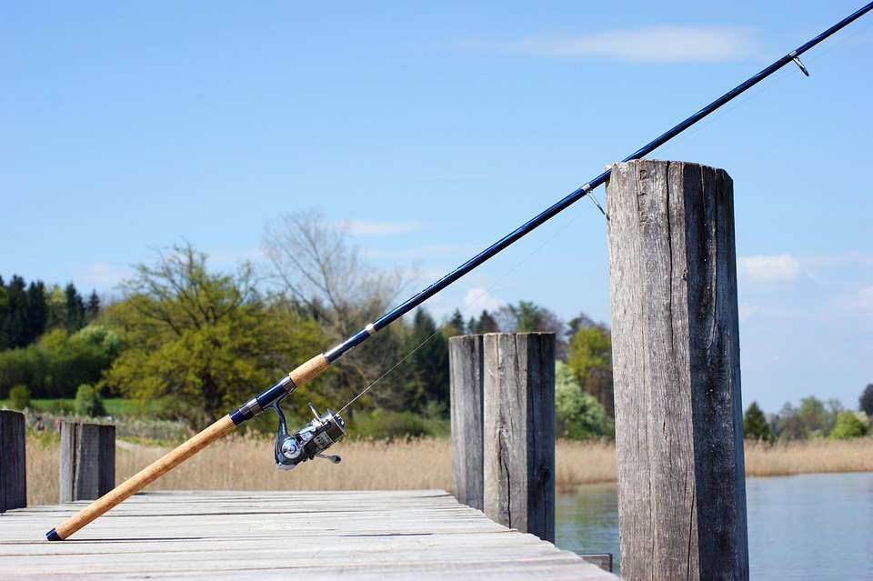 Fishing rod: Photo