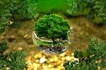 ochrony środowiska, przyrody, ekologia