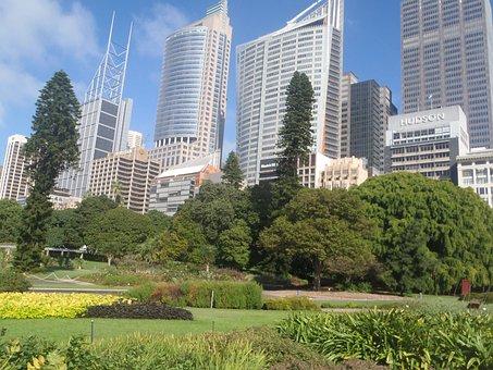Sydney in 7 Tagen - Botanischer Garten neben Bürotürmen
