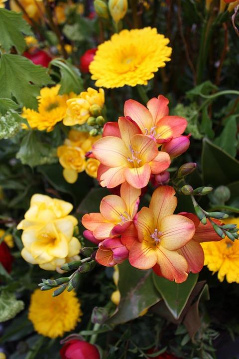 Blumenstrauss Hochzeitsstrauss Kostenloses Foto Auf Pixabay