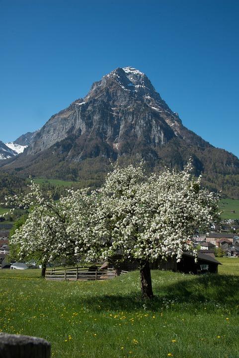 グラールス州 Glärnisch 山 · Pi...