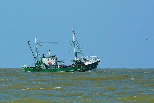 Buque, Los Buques, Barco, Barcos, Mar