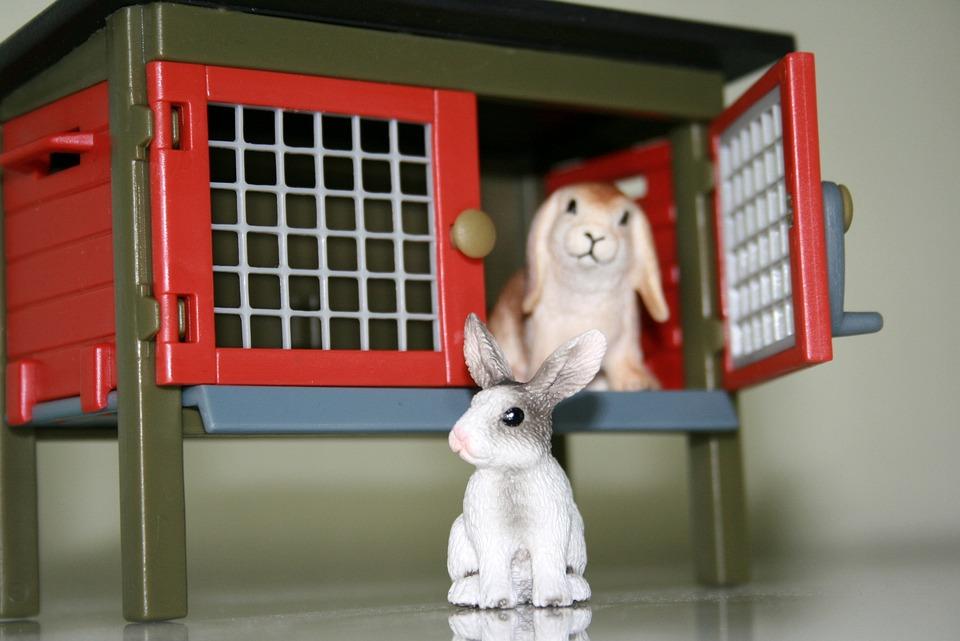 Playmobil Toys Rabbit Hutch 183 Free Photo On Pixabay