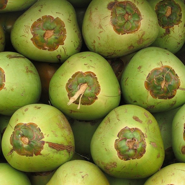 Green Exotic Fruits Coconuts Fruit Coco &#...