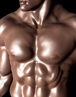 Bodybuilder, Sixpack, Six-Pack, Muscles
