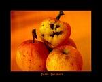 halloween, fash, autumn